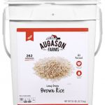 Brown Rice 26lb 4 Gallon Pail-0