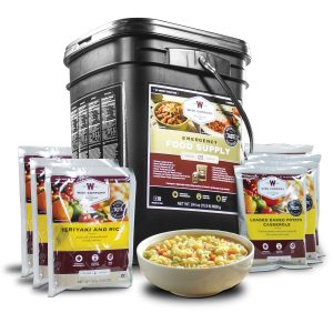 Wise Food Storage 120 Serving Entree Only Grab and Go Bucket-0