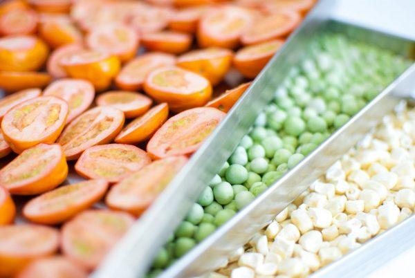 Harvest Right Standard / Medium Size Freeze Dryer Aqua / Teal-2636