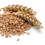Augason-Farms-Red-Wheat