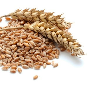 Augason-Farms-Red-Wheat