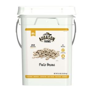 Pinto Beans in 4 gallon bucket